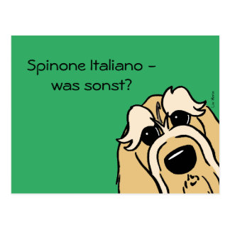Spinone Italiano - which otherwise? Postcard