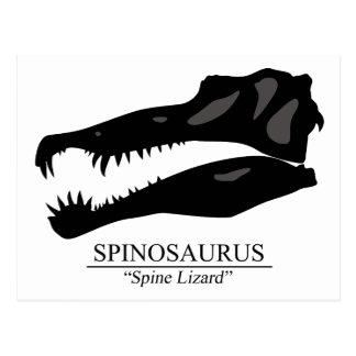 Spinosaurus Skull Postcard
