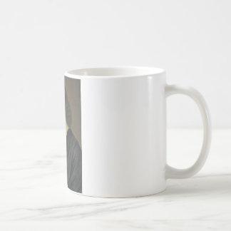 spinoza taza de café