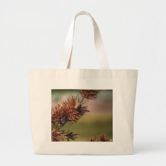 Spiny Cones Tote Bags