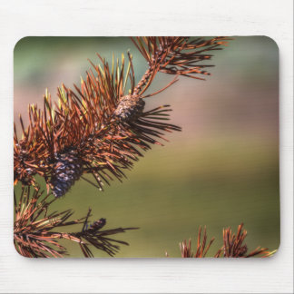 Spiny Cones Mouse Pad