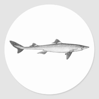 Spiny Dogfish (line art) Classic Round Sticker