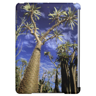 Spiny Forest Formed Of Pachypodium Trees iPad Air Cover