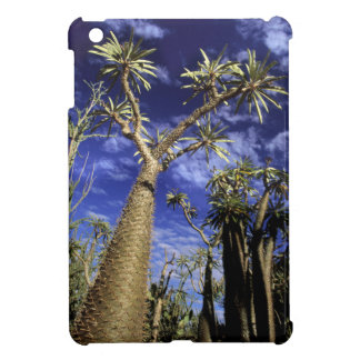 Spiny Forest Formed Of Pachypodium Trees iPad Mini Case