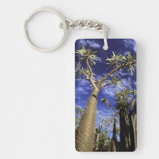 Spiny Forest Formed Of Pachypodium Trees Acrylic Key Chain