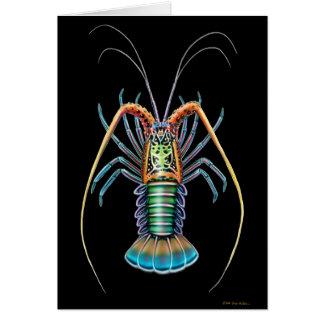 Spiny Lobster Card