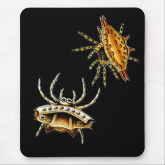 Spiny Orb-Weaver Mouse Pad