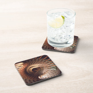 Spiny protection drink coaster