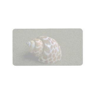 Spiral babylon (Babylonia spirata) Shell Address Label