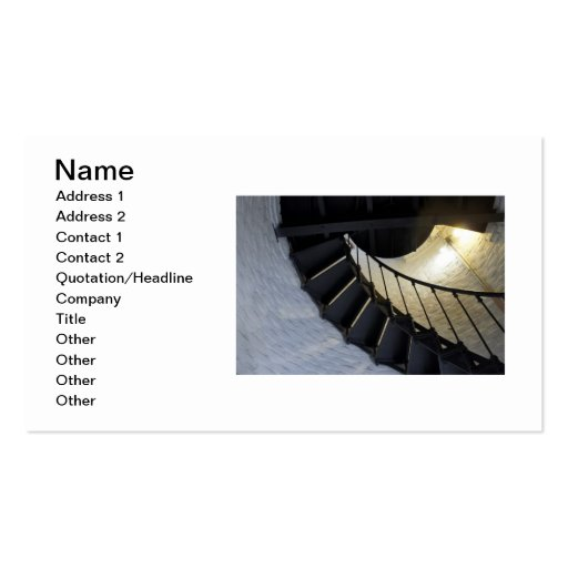 Spiral Double-Sided Standard Business Cards (Pack Of 100)