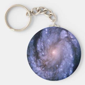 Spiral Galaxy M100 Hubble Keychains