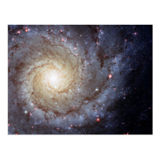 Spiral Galaxy M74 (Hubble) Postcard