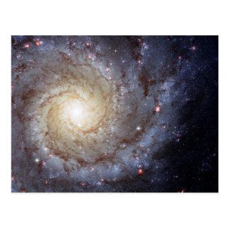 Spiral Galaxy M74 (Hubble) Postcard