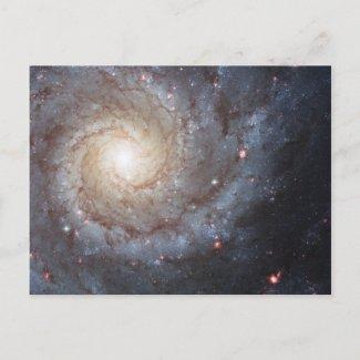 Spiral Galaxy M74 postcard