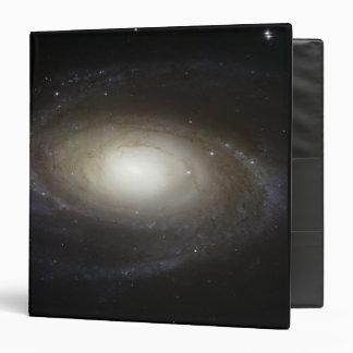 Spiral Galaxy M81 Binder