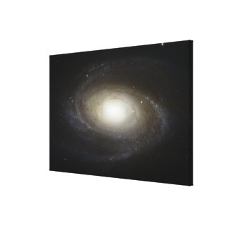 Spiral Galaxy M81 Canvas Print
