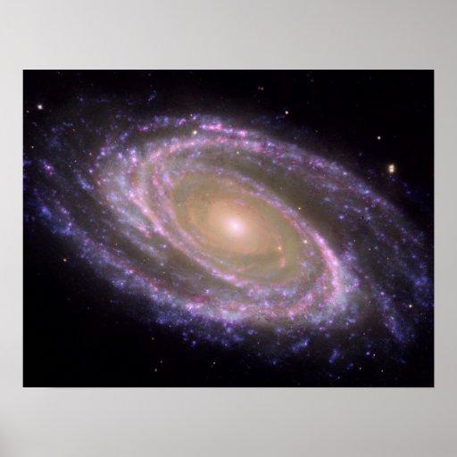 Spiral Galaxy M81 Poster