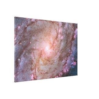 Spiral Galaxy M83 Canvas Print