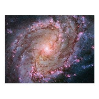 Spiral Galaxy M83 Post Card