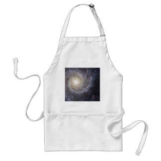 Spiral Galaxy Messier 74 NGC 628 Aprons