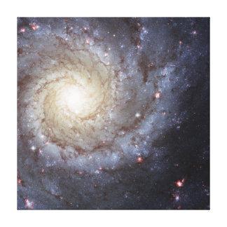 Spiral Galaxy Messier 74 NGC 628 Canvas Print