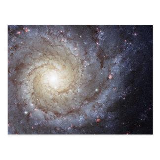 Spiral Galaxy Messier 74 NGC 628 Postcard