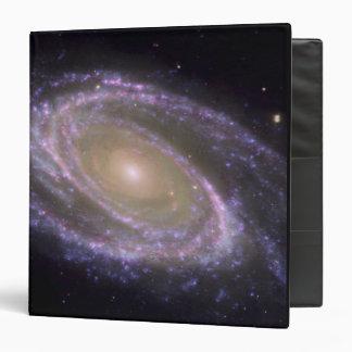 Spiral galaxy Messier 81 Binder
