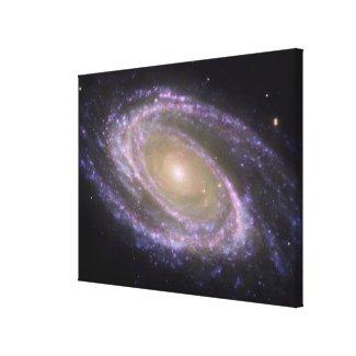 Spiral galaxy Messier 81 Canvas Print