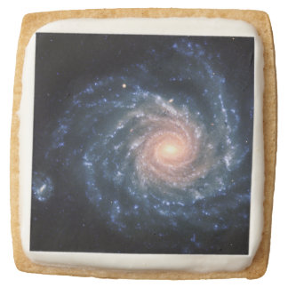 Spiral galaxy NGC 1232 Square Shortbread Cookie