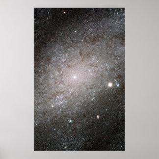 Spiral galaxy NGC 300. Poster