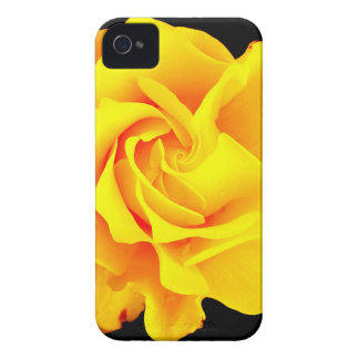 Spiral Rose iPhone 4 Case