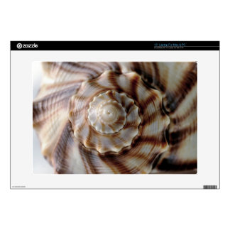 "Spiral Shell 15"" Laptop Skins"