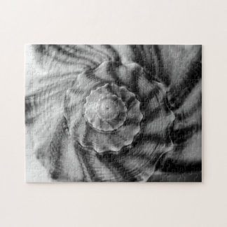 Spiral Shell, Black and White, Puzzles