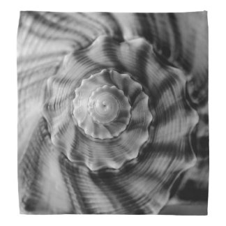 Spiral Shell, Black and White Bandana