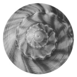 Spiral Shell, black & white, Plate