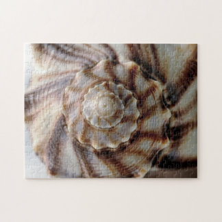 Spiral Shell Jigsaw Puzzle