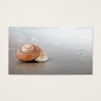Spiral Shell On Sandy Beach Near Sea Business Card
