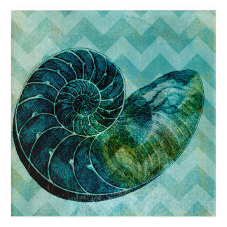 Spiral Turquoise Conch Shell Acrylic Wall Art