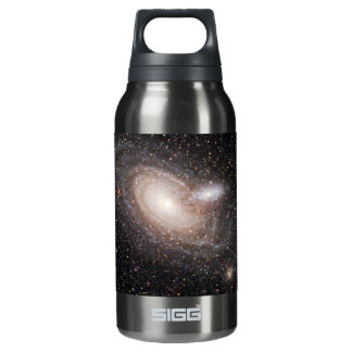 Spiraling Together Insulated Water Bottle