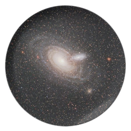 Spiraling Together Plate