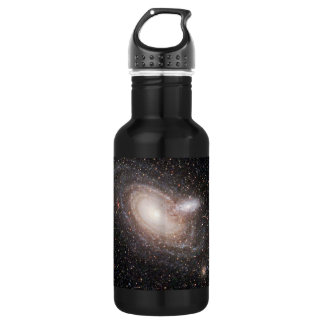 Spiraling Together Stainless Steel Water Bottle