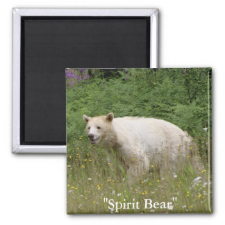 Spirit Bear Gifts Magnet