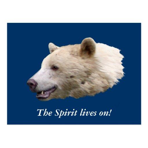 """Spirit Bear"" Gifts Postcard"