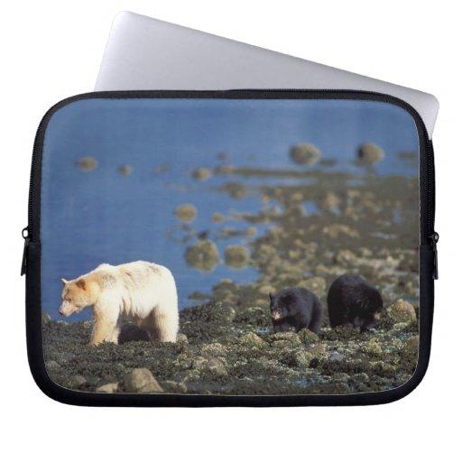 spirit bear, kermode, black bear, Ursus Computer Sleeves