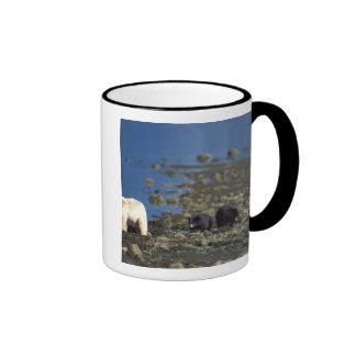 spirit bear, kermode, black bear, Ursus Coffee Mugs