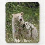 Spirit Bear Mousepads