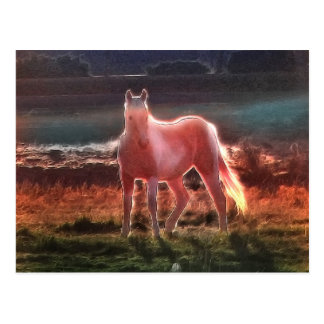 Spirit Dream Horse Postcard