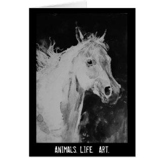 spirit horse card