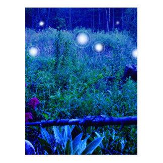 Spirit Lights Blue Night Marshy Meadow Orbs Postcard