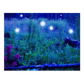 Spirit Lights Postcard